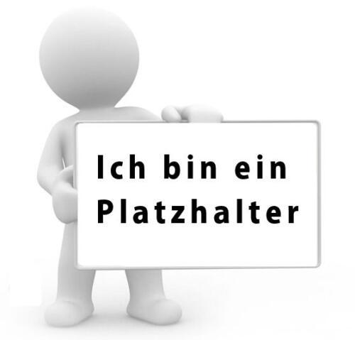 platzhalter-dreckstueckchen.de_